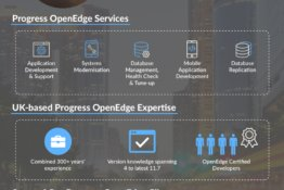 Pace IT Progress OpenEdge Services Marketing Material